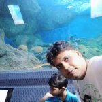 Inside Tunnel of aquarium