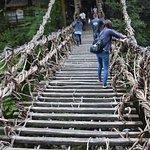 in the bridge