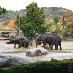 Photo de Prague Zoo