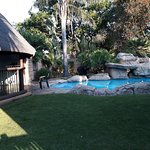 Summer Garden Guest House (The Palms) Photo