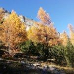 Photo of Laghi di Cancano