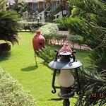 Coconut Grove Photo