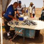 Photo of Essaouira Fish Market
