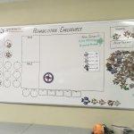 Organigrama de la distribución de tortugas