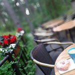 It's refreshing, sitting in the outdoor terrace of the cafe surrounded by tall trees on a sunny