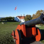 Cannons defending a flag