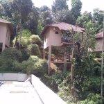 Rippon Mount Resorts resmi