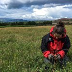 National Trust rangers, planting wildflowers in the meadows.