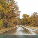 Wildlife Loop Road