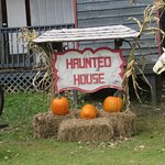 Great Haunted House experience
