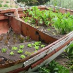 old fishing boat put to good use