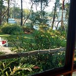 Foto de Captain Whidbey Inn