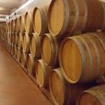 It's barrels of fun!
