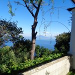 Photo de Villa San Michele