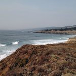 One of the views at Sea Ranch along the bluffs