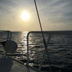 Foto de Pelican Adventures