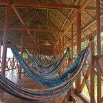 Ecoamazonia Lodge Image