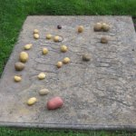 The grave of Frederick the Great and yes those are potatoes - visit to find out why....