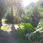 Le jardin du Tirreno
