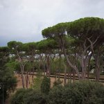 the Villa Borghese from our room's balcony
