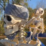 Pirate and parrot skeletons for mid October trip