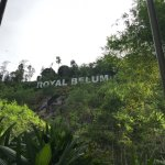 Photo of Belum Rainforest Resort
