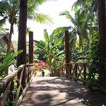 the bridge to our hidden Garden Suite