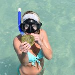 snorkeling a fun way to find shells!
