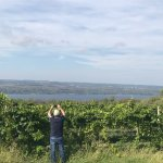Photo of Finger Lakes Wine Country
