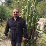 Many Cacti...
