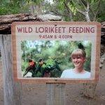 Photo of Lone Pine Koala Sanctuary