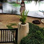 Photo de Mercure Koh Chang Hideaway Hotel