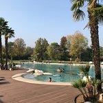 Photo of Relilax Hotel Terme Miramonti