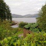 View of Loch Creran