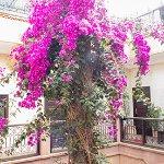 Photo de Hotel Cecil Marrakech