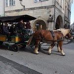 Cette rue pourrait laisser la place aux chevaux !