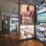 The Irish Draught Horse - FHC Experience 1st floor