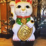 Come check out the Asian City #AsianKitty. A good luck charm in Japan, we hope this giant sculpt