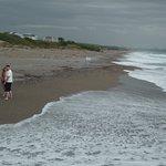 Photo de Amelia Beach Resort & Spa