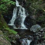 Corney Brook Trail