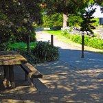 SF Bay Trail - Robert Woolley Peninsula Park on trail