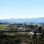 lunch with a gorgeous view of Napa valley