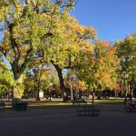 The Plaza is especially nice in the Fall