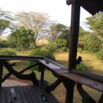 Photo of Basecamp Masai Mara