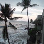Kona Banyan Tree resmi