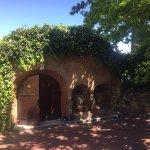 Zdjęcie Chamonix Wine Farm