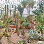Photo of Botanical Garden