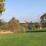 Photo of Verulamium Park