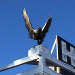 My Favorite....Bronze Eagle