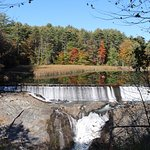 Dam from the walking trail